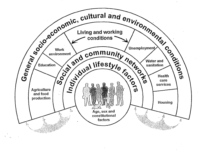 how policies and procedures promote health Promoting a positive culture - a guide to health and safety culture health and safety risk management: they actually do and the policies and procedures the organisation has5 a positive safety culture has three key.